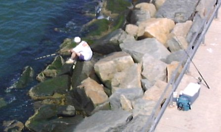 Fishing the Rockpiles I
