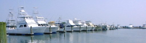 The Fleet at I.R. Inlet